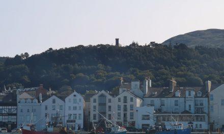 The Albert Tower & Elfin Glen