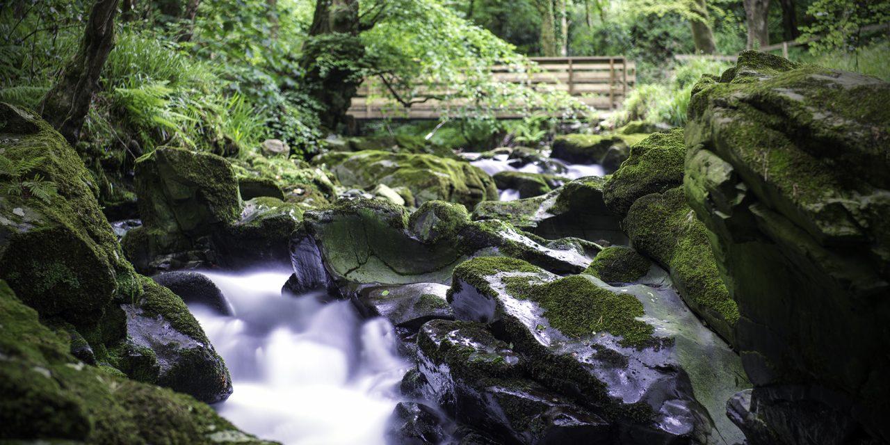 How I Captured – Ballaglass Glen