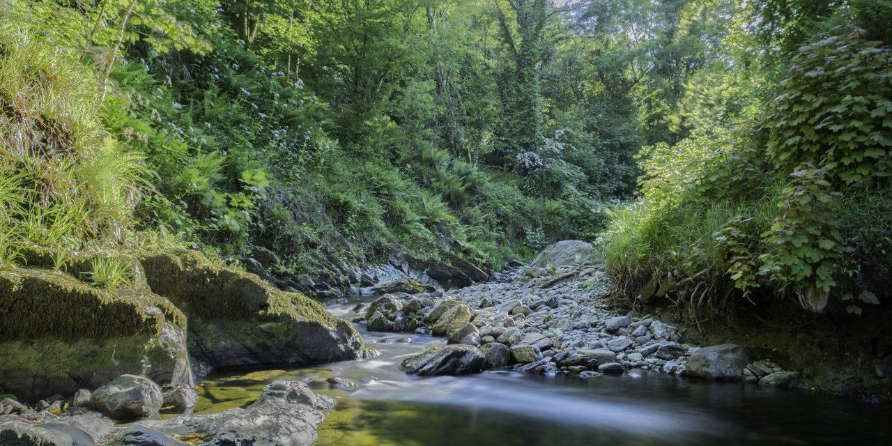 A Hike Through Laxey Glen